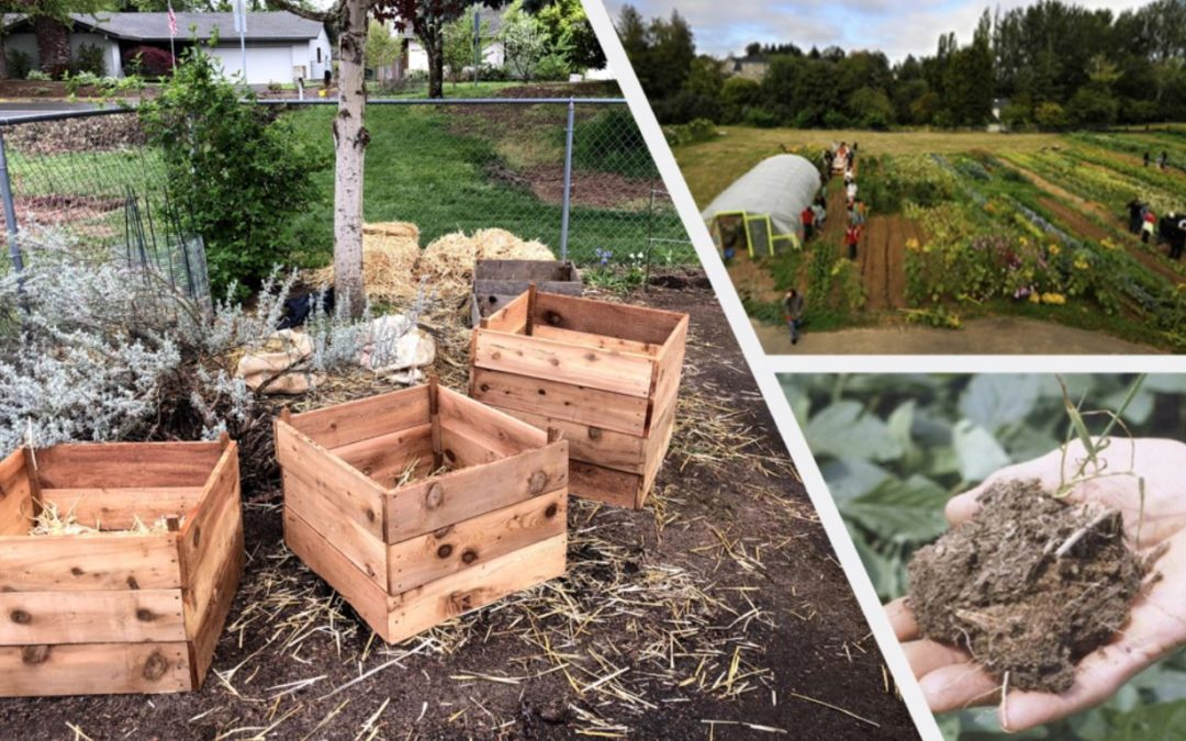 Soil Health Workshop for School Gardens