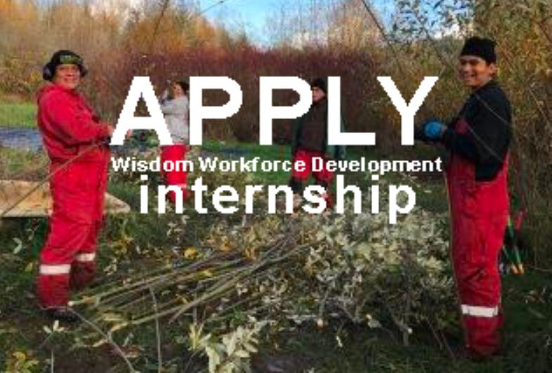 Wisdom Workforce Development Internships