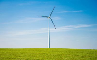 The inclusive green economy in EU development cooperation