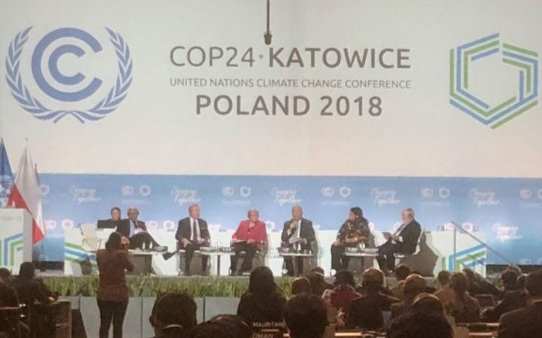 Global Warming: What can we learn from the COP24 meeting?