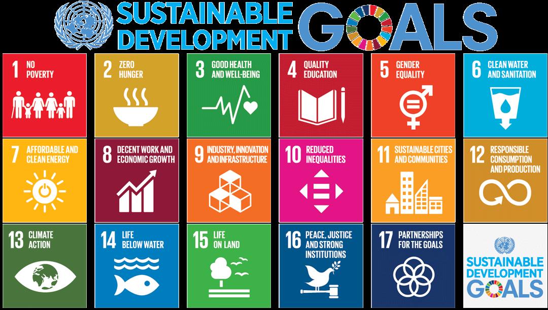 Everyday for Everyone: Sustainable Development Goals Workshop with Neeraja Havaligi