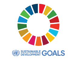 Progressing National SDGs Implementations