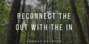 Sunday Saunter – Forest Park Reflective Hike