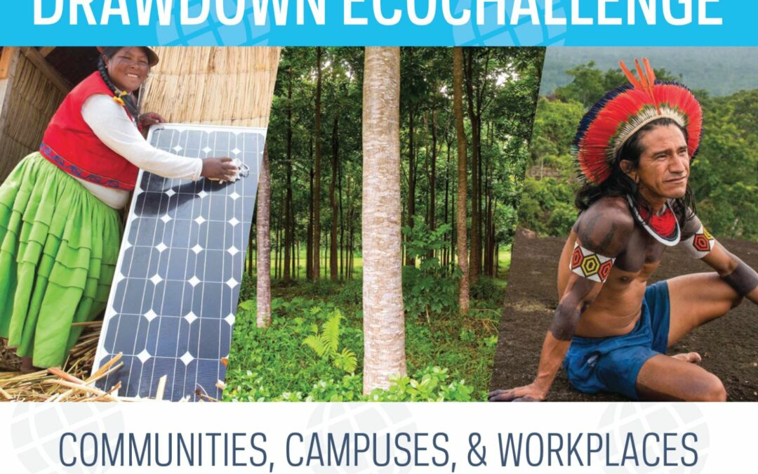 Drawdown EcoChallenge