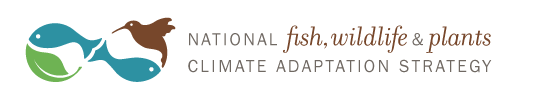 Climate Adaptation Leadership Awards