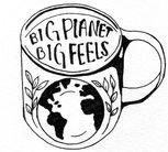Big Planet, Big Feels
