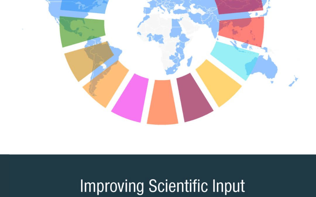 Improving Scientific Input to Global Policymaking with a Focus on the UN Sustainable Development Goals