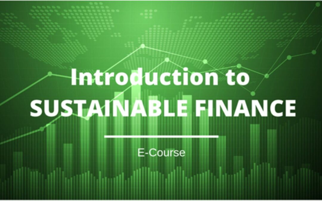 Introduction to Sustainable Finance