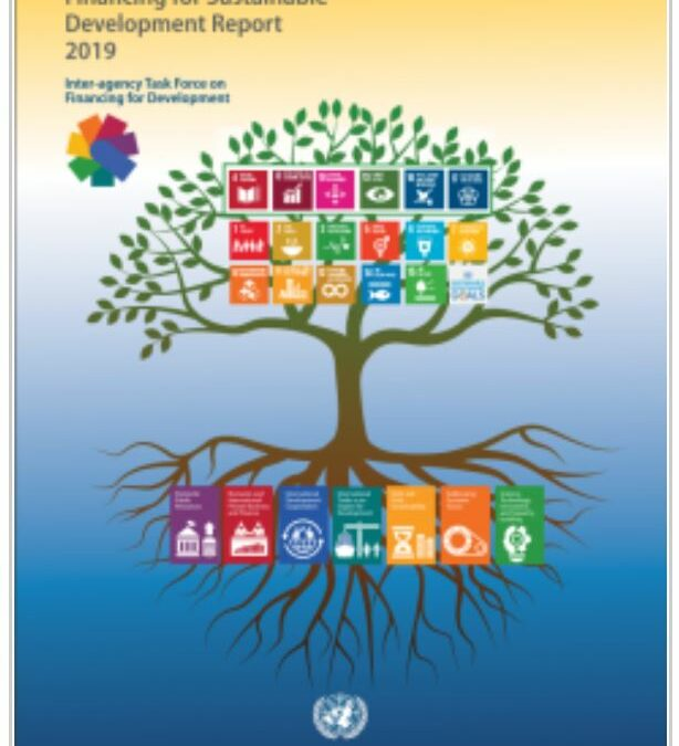 Financing for Sustainable Development Report
