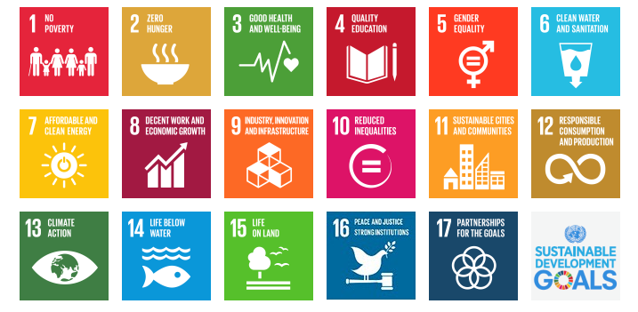 Free UN Sustainable Development Courses