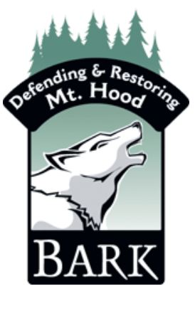 Bark Base Camp