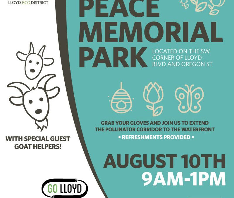 Peace Memorial Park Clean-Up