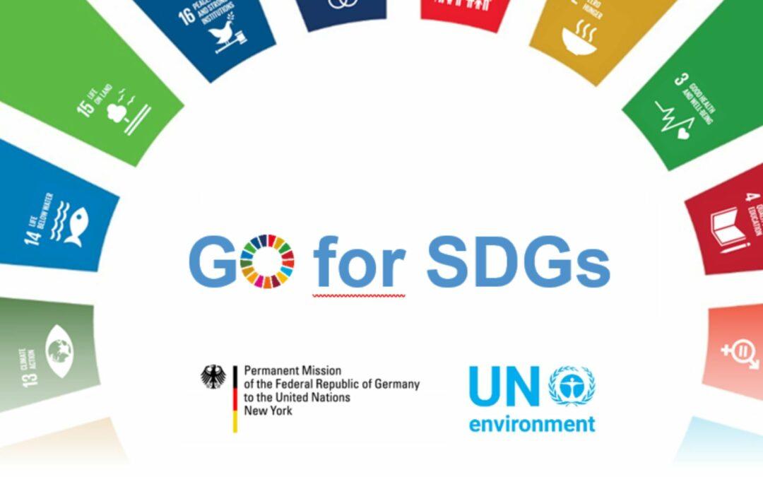 Global Opportunities for SDGs (GO for SDGs) initiative