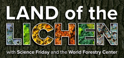Land of the Lichen with Science Fridays and the World Forestry Center – Cancelled