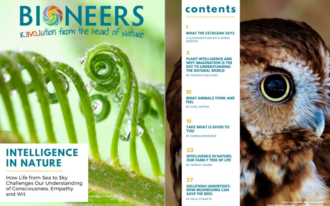 Bioneers Reader: Intelligence in Nature