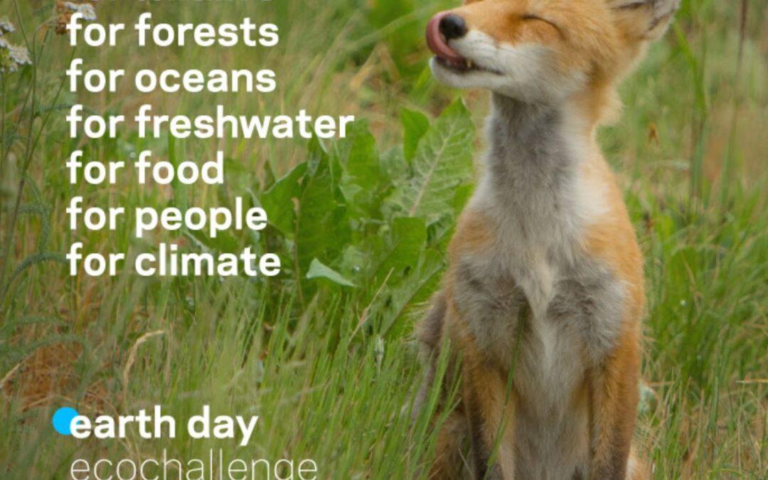 Earth Day EcoChallenge