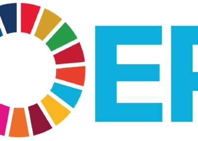 The digital introduction of the SDGs into Higher Education Teaching