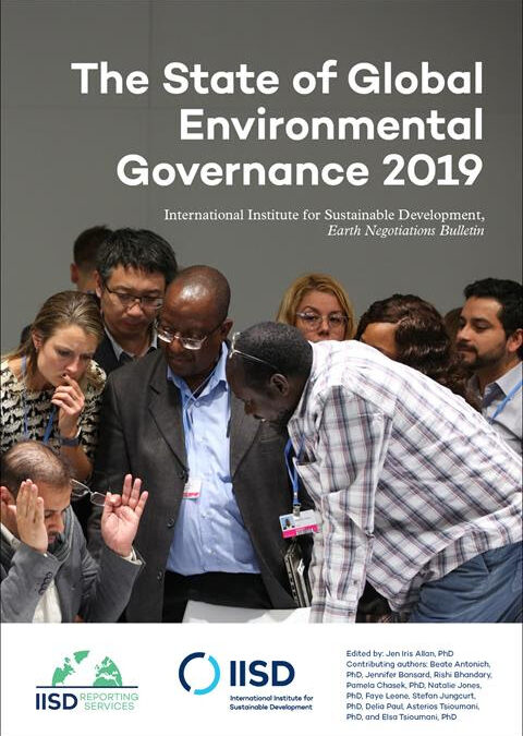The State of Global Environmental Governance 2019