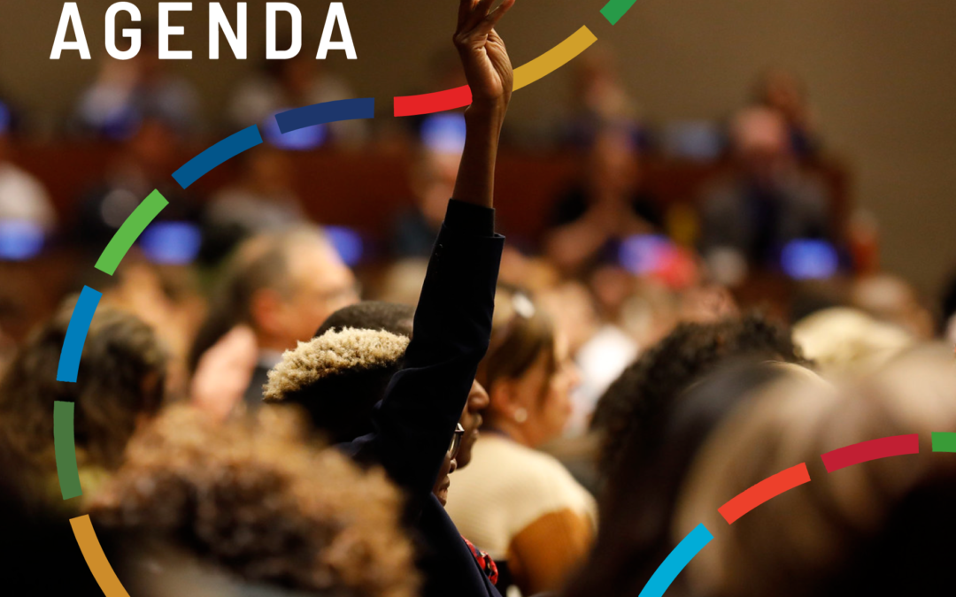 Stakeholder Engagement & the 2030 Agenda – A Practical Guide
