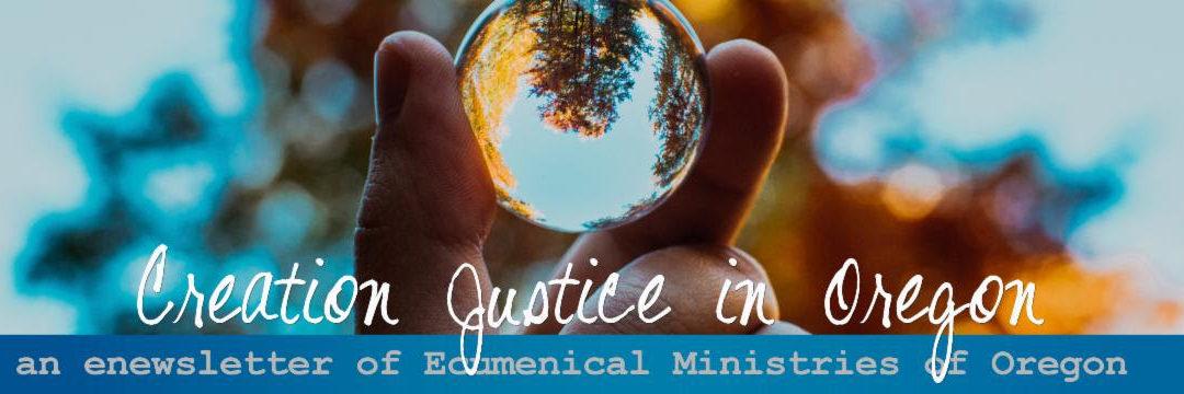 First Creation Justice webinar