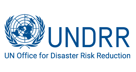 Making Cities Resilient: Developing Local DRR and Resilience Strategies