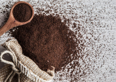 Composting With Coffee Grounds: Good for Plants or Just a Fad?