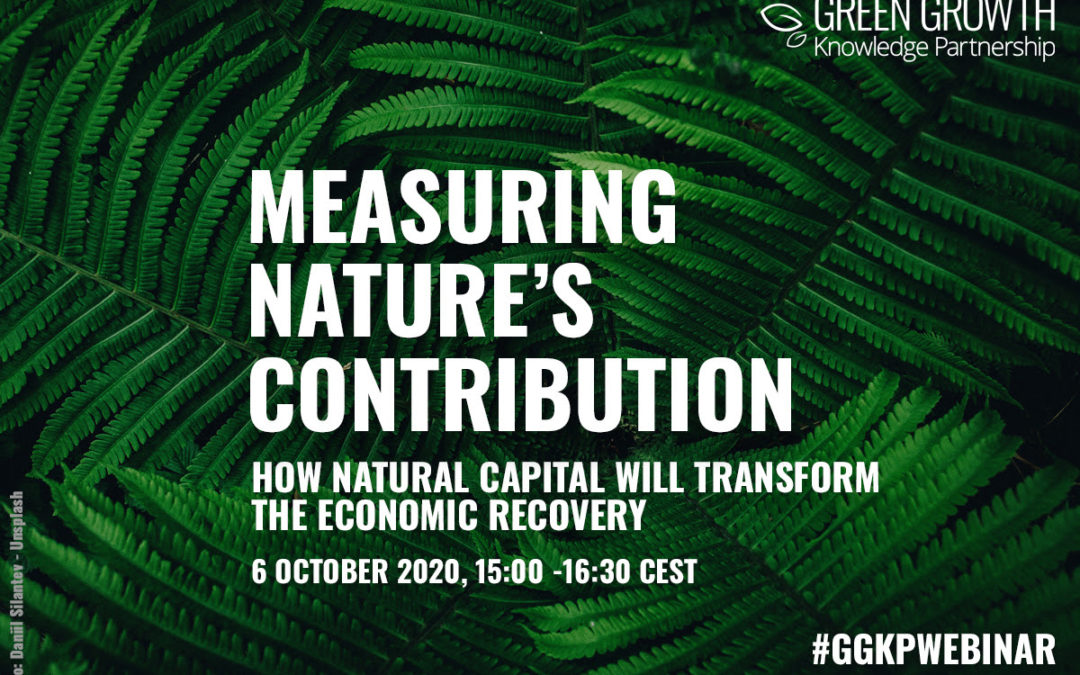 Measuring Nature's Contribution: How natural capital will transform the economic recovery