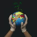 Leading the Way: Global Universities as Living Labs and Agents of Change for Climate Action & Sustainability
