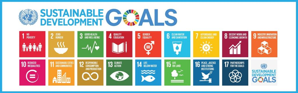United Nations Sustainable Development Goals 17 Goals 1 No Poverty 1 Zero Hunger 3 Good Health and Well-Being