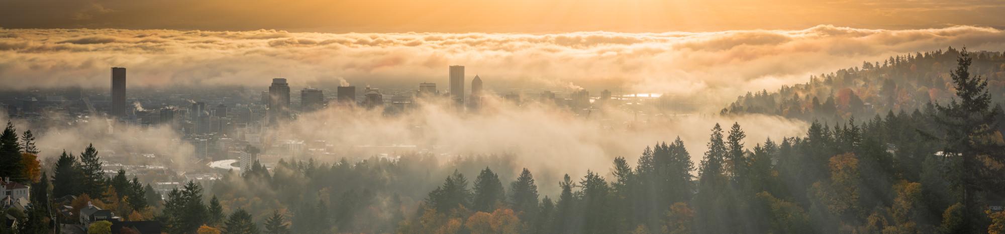 Portland Oregon Foggy Landscape
